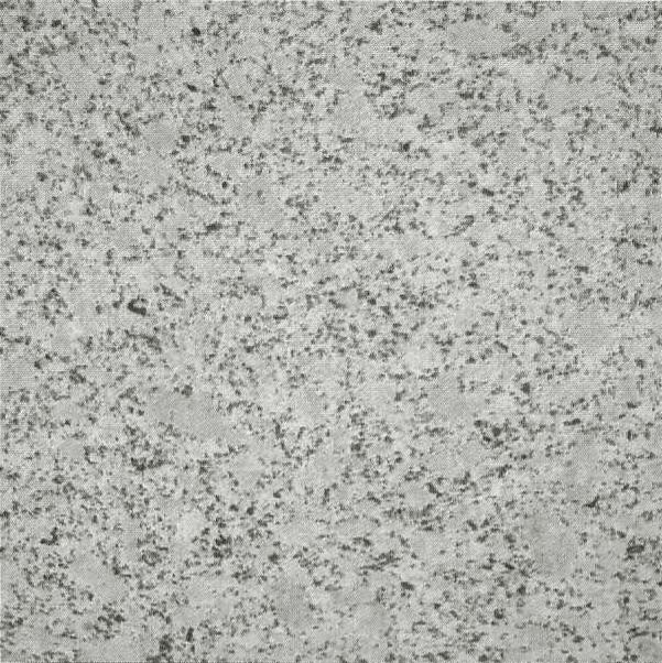StoneDeck White Granite